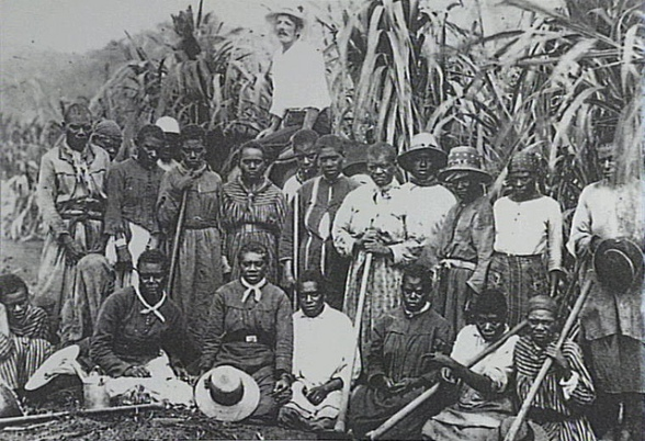 Kanaka - Pasifika peoples - on a plantation in Queensland, late 1800s