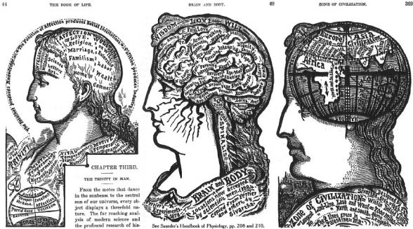 The Book of Life - Brain and Body - Zone of Civilization