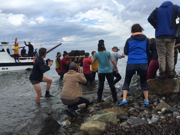 Lesvos boat landing, November 2015.Pallister-Wilkins